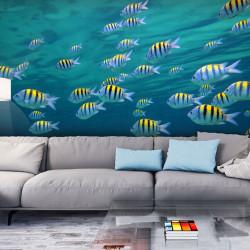Fototapeta - Underwater landscape - Caribbean