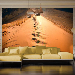 Fototapeta  Namib Desert  Africa