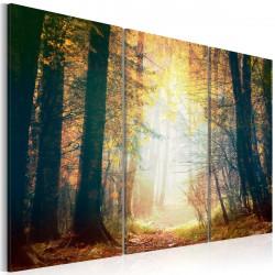 Obraz - Beauty of autumn - triptych