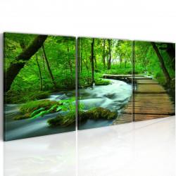 Obraz - Forest broadwalk - triptych