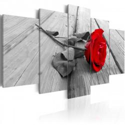Obraz  Rose on wood