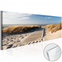 Obraz na akrylátovém skle  Wild Beach [Glass]