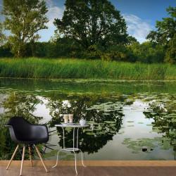 Fototapeta - The Magic Pond