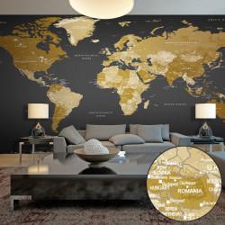 Fototapeta XXL  World Map Modern Geography II
