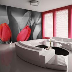 Fototapeta  Red tulips on black and white background
