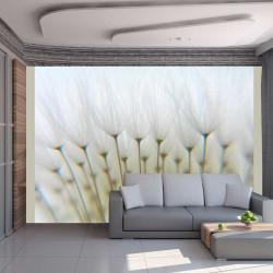 Fototapeta  Dandelion forest