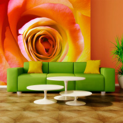 Fototapeta  Desert rose