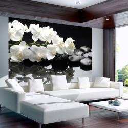 Fototapeta  SPA, kameny a orchidea