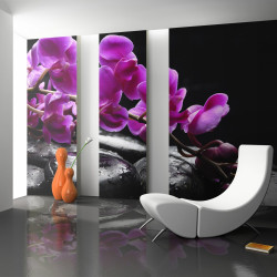 Fototapeta  Relaxing moment orchid flower and stones