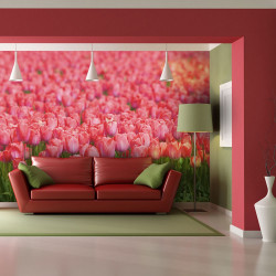 Fototapeta  Spring meadow  fresh pink tulips