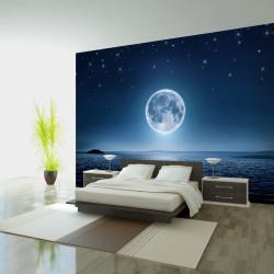 Fototapeta - Moonlit night