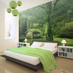 Fototapeta - Green seclusion