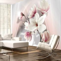 Fototapeta  White magnolias