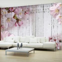 Fototapeta - Apple Blossoms