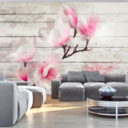 Fototapeta  Gentleness of the Magnolia