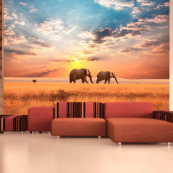 Fototapeta  African savanna elephants