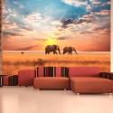 Fototapeta - African savanna elephants