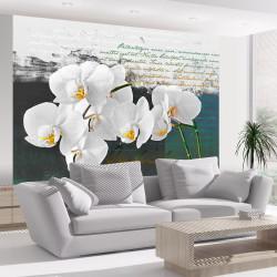 Fototapeta  Orchid  poets inspiration