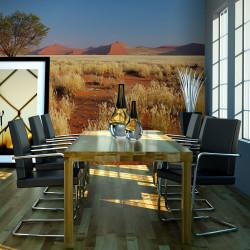 Fototapeta  Desert landscape, Namibia