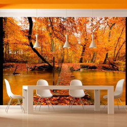 Fototapeta  Autumn bridge