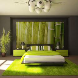 Fototapeta  Exotic ambiance with bamboo