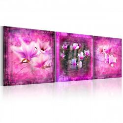 Obraz  Růžová magnolie