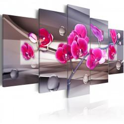 Obraz  Orchidej na tlumené pozadí