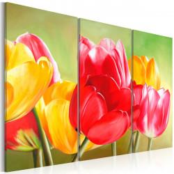 Obraz  Tulips bloom again...