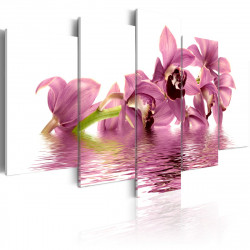Obraz  Floating lilies