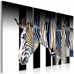 Obraz  Stripes