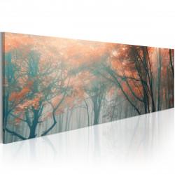 Obraz  Autumnal fog