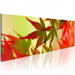Obraz - Touch of autumn