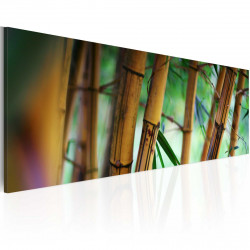Obraz  Wild bamboos