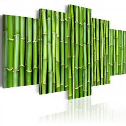 Obraz  Zelený bambus