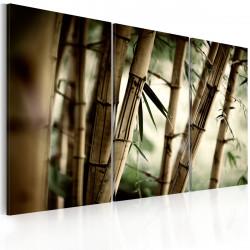 Obraz  Bambusová harmonie
