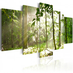 Obraz - Slunce mezi stromy