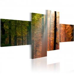 Obraz  Pohled na podzimní les