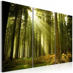Obraz  Zelený les