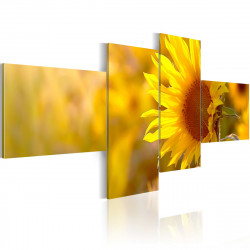 Obraz  Žlutá slunečnice