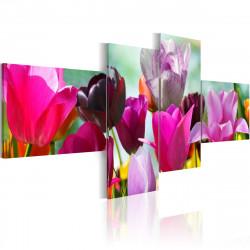 Obraz  Růžové tulipány
