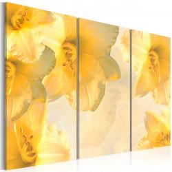 Obraz  Žluté lilie