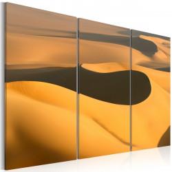 Obraz  Nekonečná poušť