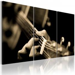 Obraz  Tajemné zvuky kytary
