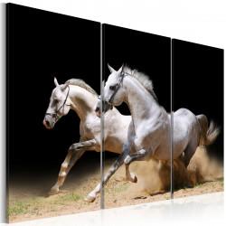 Obraz  Koně síla a rychlost