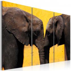 Obraz  Sloní polibek