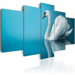Obraz  Odraz labutě