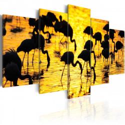 Obraz  Plameňáci na jezeře