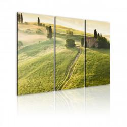 Obraz  Pod toskánským sluncem
