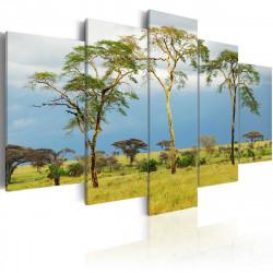 Obraz  Africká příroda