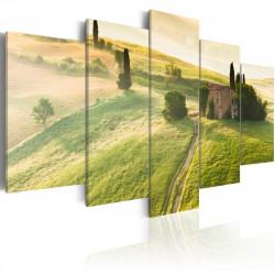 Obraz  Zelené Toskánsko